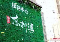 金鼎·东柳湾接待中心开放
